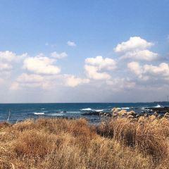 Woljeongri Beach  User Photo