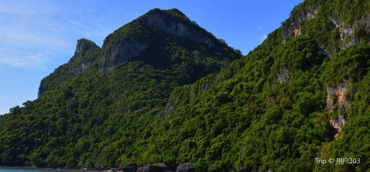 모스키토 섬1