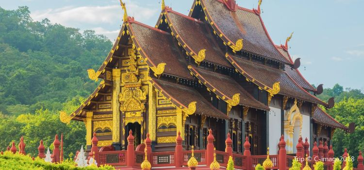 Chiang Mai Botanical Garden2