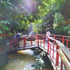 Qingyuan Tianzishan Waterfall User Photo