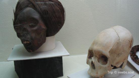 Museoâ Regionalâ Iquique