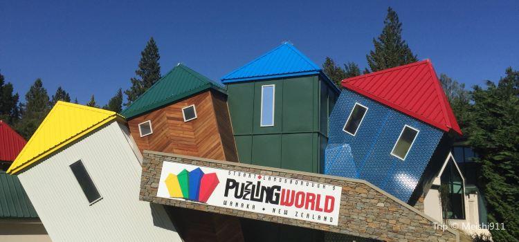 Puzzling World2