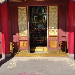 紅山公園大佛寺用戶圖片