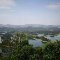千島湖東南湖區景區用戶圖片