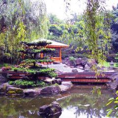 The Hiroshima Botanical Garden User Photo