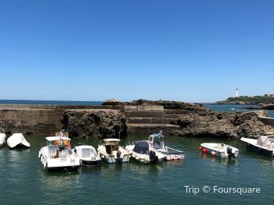 Port des pêcheurs à Biarritz