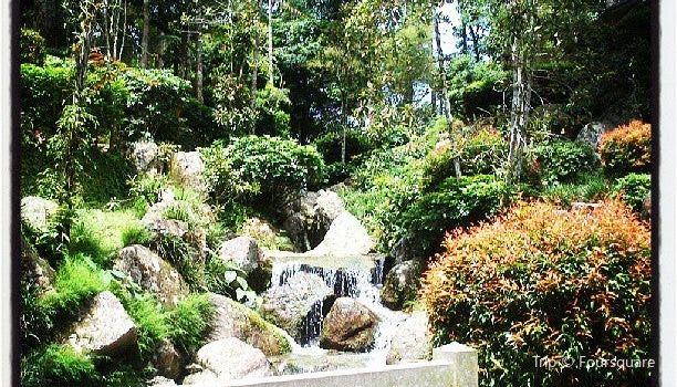 Japanese Village at Colmar Tropicale1