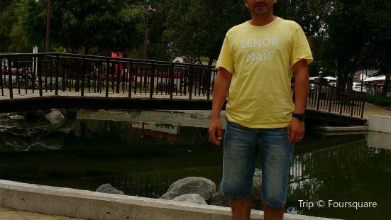 Plaza de Armas de Pucon