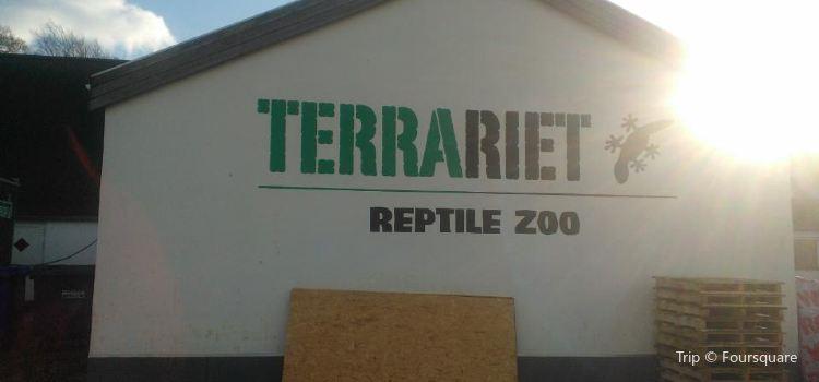Terrariet3