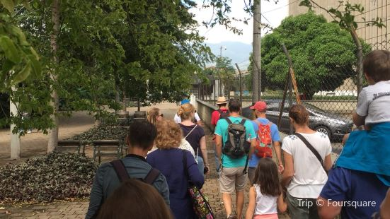 Real City Tours The Walking Tours