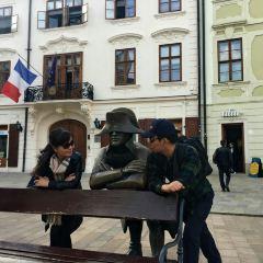 拿破崙士兵雕像用戶圖片