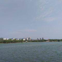 東阿阿膠城用戶圖片