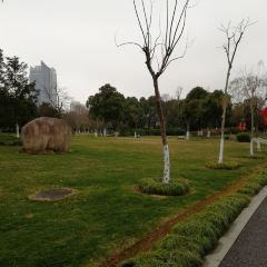 Yinzhou Park User Photo