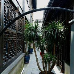 South Street User Photo