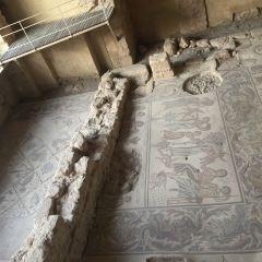 Madaba Archaeological Park User Photo
