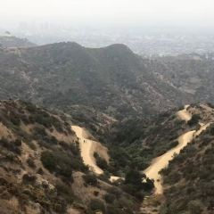 Hollywood Hills User Photo