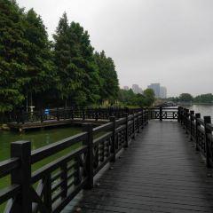 蠡湖大橋公園のユーザー投稿写真