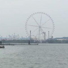 Willow Lake Ferris Wheel User Photo