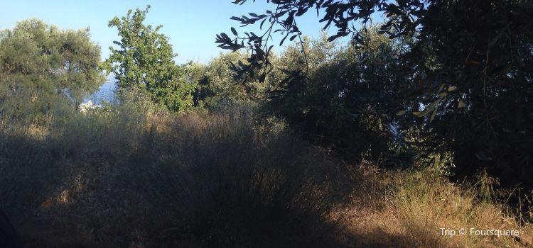 Parc Naturel Départemental d'Estienne d'Orves1