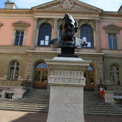 University of Geneva User Photo