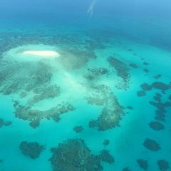 Great Barrier Reef Airplane Tour User Photo