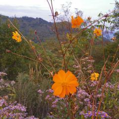 Wild River Mountain Scenic Area User Photo