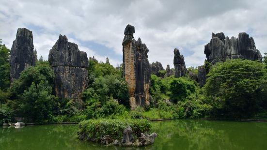 Stone Forest UNESCO site