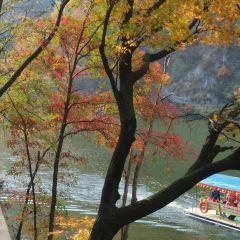 Shahezi Manzu Cunzhai User Photo