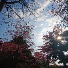 West Lake Park User Photo