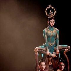 Henan Art Center User Photo