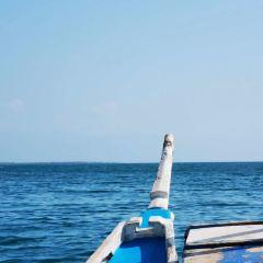 Pandan Island User Photo