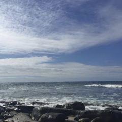 Shell Beach Tide Pools用戶圖片