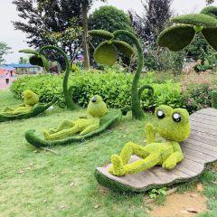 썬다싱 생태리조트 공원 여행 사진