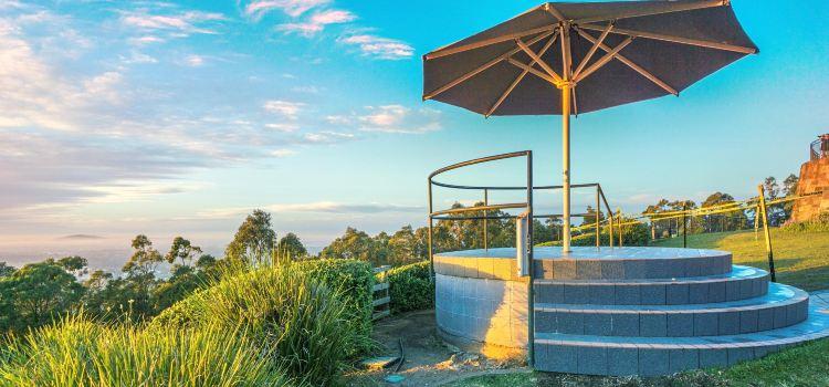 Brisbane Lookout Mt. Coot-tha