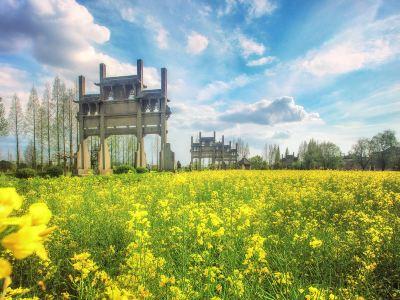 Bao's Garden of Tangyue Arch Group