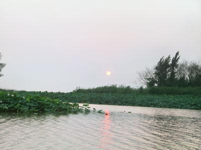 Weishanhu Wetland Park