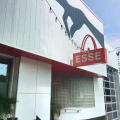 Esse Purse Museum User Photo