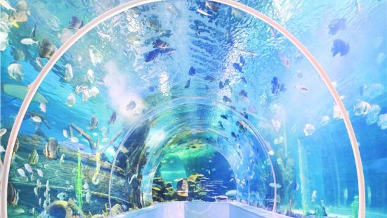 Linyi Ocean World Theme Park
