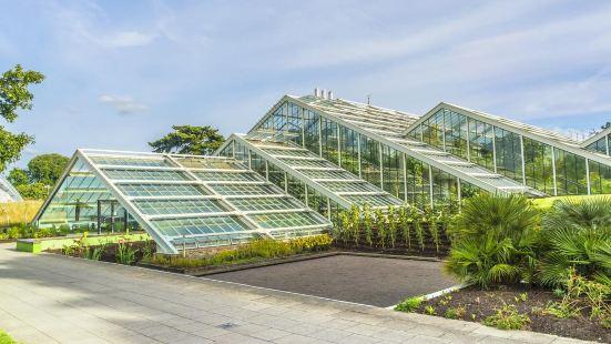 왕립 식물원