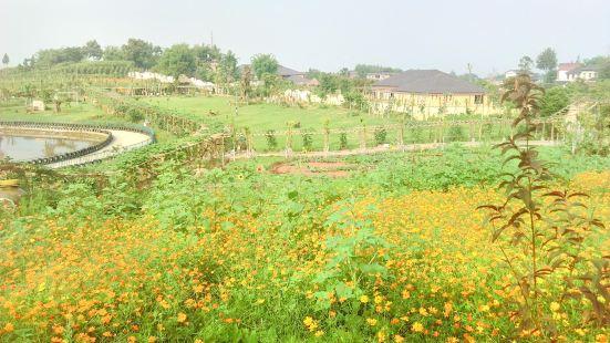 Youjun Ecological Park