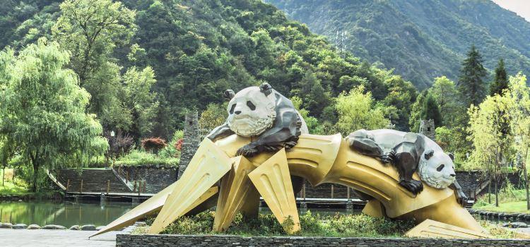 와룡 판다 자연 보호구