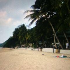 White Sand Beach User Photo