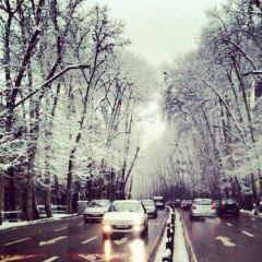 Valiasr Street User Photo