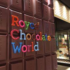 Royce Chocolate World User Photo