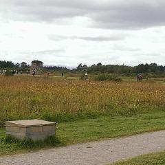 卡洛登戰場用戶圖片
