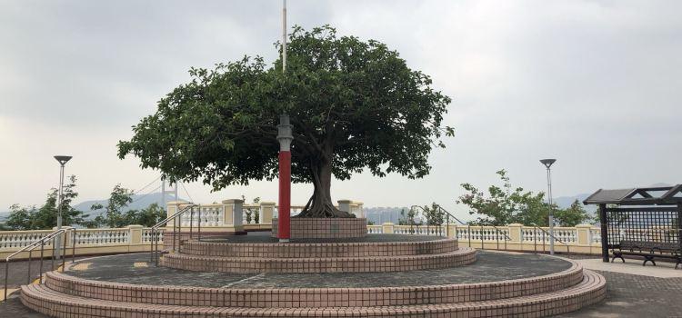 Lantau Link Visitors Centre & Viewing Platform3
