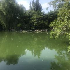 Beijing Zoo User Photo