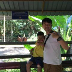 록 카위 야생 공원 여행 사진