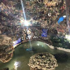 Zhuwan Dayi Temple User Photo