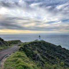 Cape Reinga User Photo